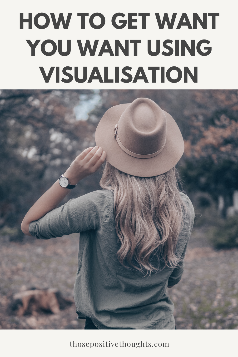 How to get want you want using visualisation